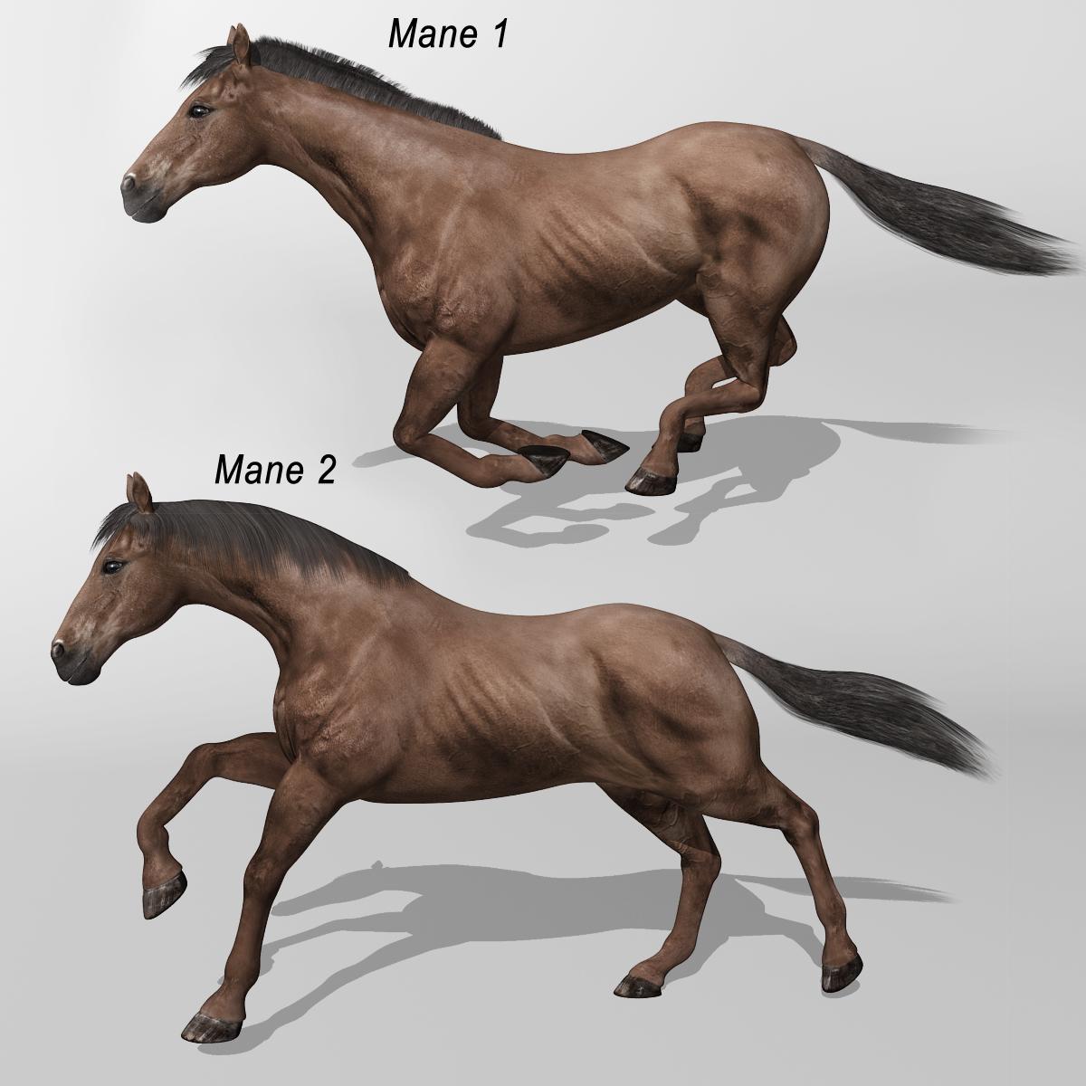 horse   dark brown    u2013 motioncow