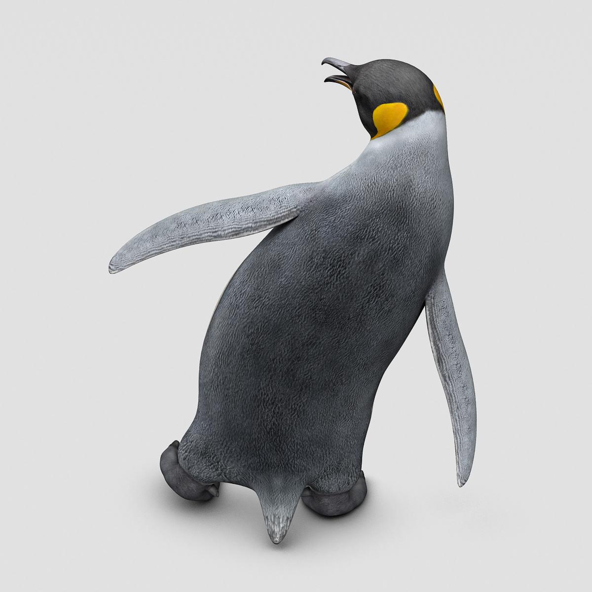 penguin king � motioncow