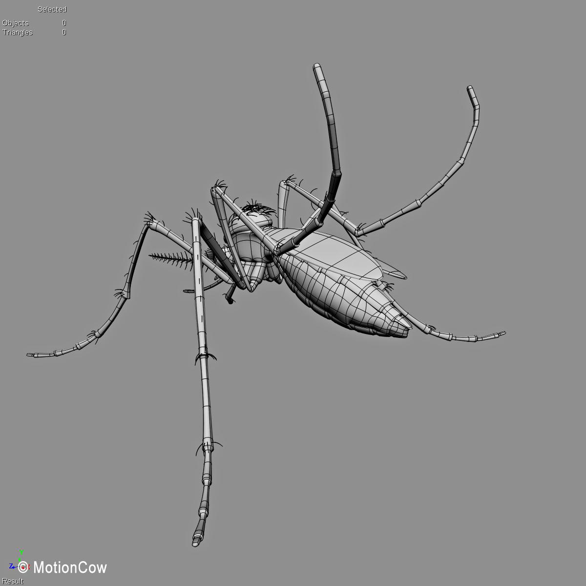 Mosquito – MotionCow